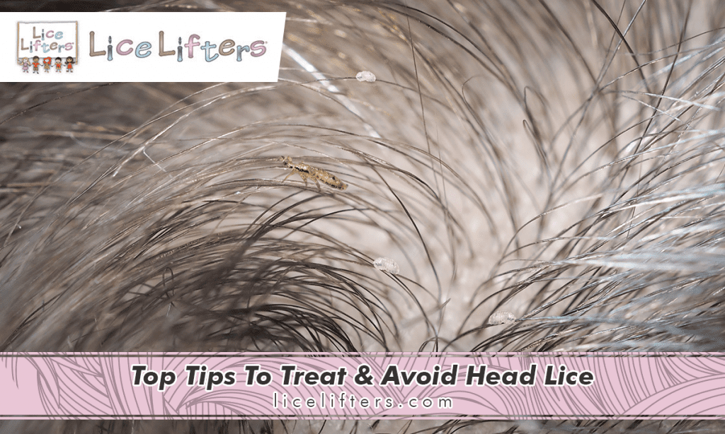 Top Tips To Treat & Avoid Head Lice 2020