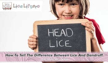 How to tell the difference between lice and dandruff 2020